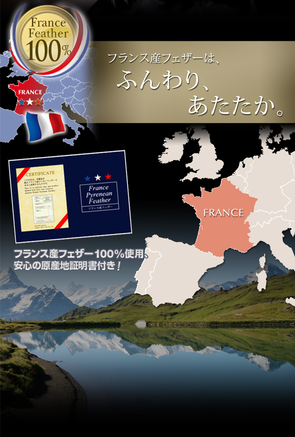 フランス産フェザー100%羽根掛布団