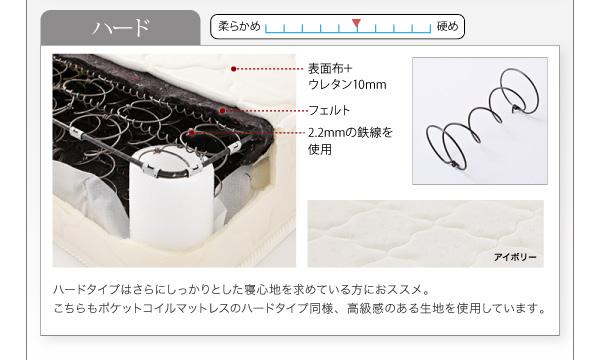 <レギュラー>アイボリー/ブラック